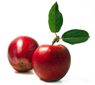 apples-leaf